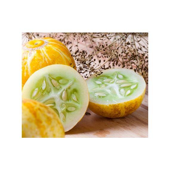 Concombre citron